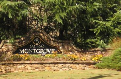 Montgrove Johns Creek Neighborhood