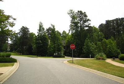 Nichols Creek Cumming GA Neighborhood Of Homes (11)