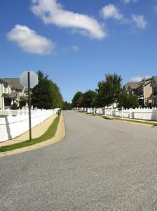 Old Towne Bethelview Cumming GA Neighborhood (23)