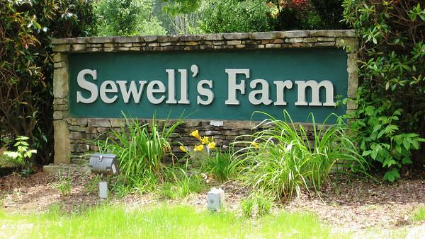Sewell's Farm-Cumming Georgia Neighborhood (2)