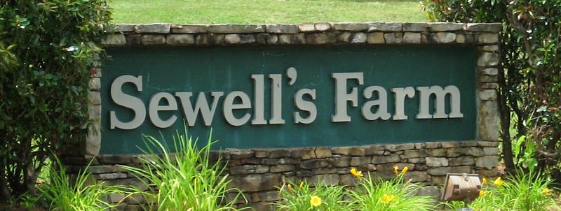 Sewell's Farm-Cumming Georgia Neighborhood (1)
