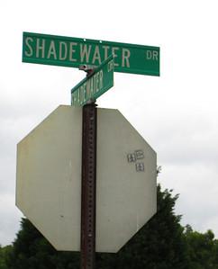 Shadewater Cumming GA Near Lake Lanier (3)