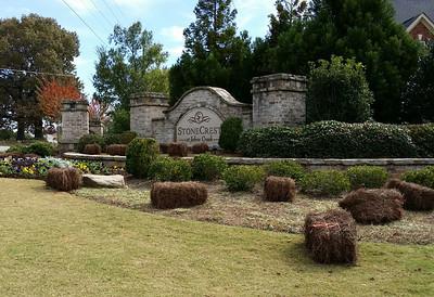 Stonecrest At Johns Creek Neighborhood (3)