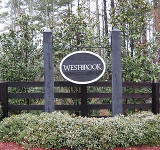 Westbrook-Cumming-Peachtree Residential (66)