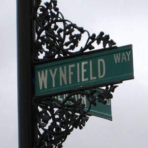 Wynfield 3
