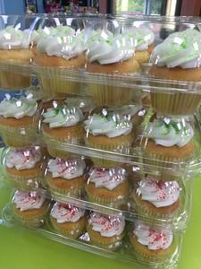 Cupcake (25)