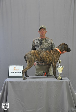 2017 UKC Cur Squirrel Dog World