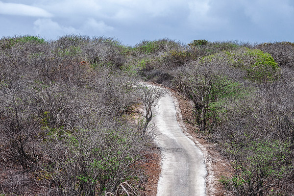 Exploring the National Christoffelpark in Curacao.