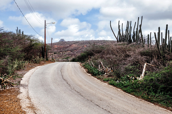 Road by the Christoffel National Park in Curacao.
