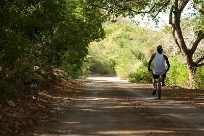 Cyclist on the road to landhuis Groot Sint Joris