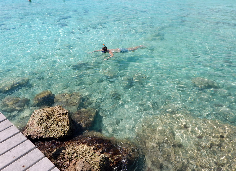 Clear water, and warm.