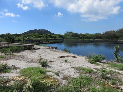 Curacao Sewer Pond