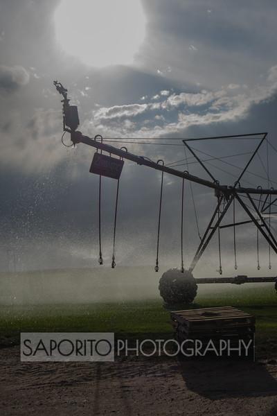 Sod Farm