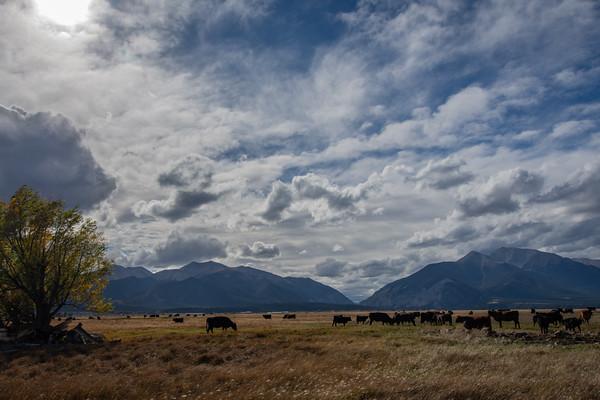 Across Colorado