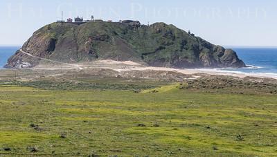 Point Sur Lighthouse Big Sur, California 1503BS-PSL1