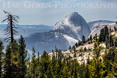 Half Dome from Oldstead Point Yosemite, CA 1907S-HD1