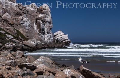 Morro Rock Morro Bay, Calfornia 1305C-MRWG1