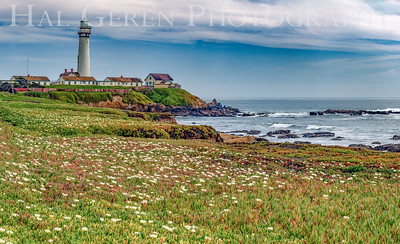 Pigeon Point Lighthouse 2102C-PPP1