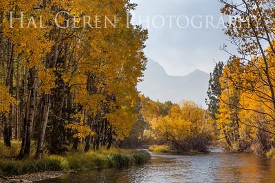 Aerie Crag Rush Creek 202010S2 - ACRC1A