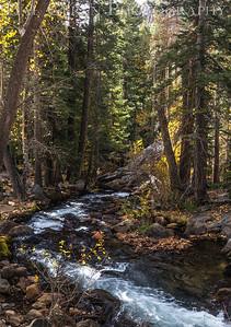 Lee Vining Creek Lee Vining, California 1610S2-LVC6