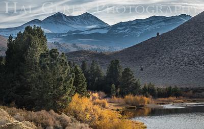 Hoover Wilderness Bridgeport, California 1610S2-HV3