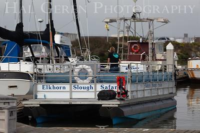 Elkhorn Slough Safari Boat Elkhorn Slough, Moss Landing, CA 1809E-ESSB1