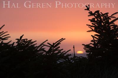 Gold Beach Sunset Prairie Creek Redwoods, California 1708C-S7