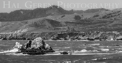 Duncan's Landing Bodega Bay, California 1504FB-DL2BW1