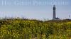 Pigeon Point Lighthouse<br /> Davenport, California<br /> 1504FB-PPL1