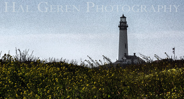 Pigeon Point Lighthouse Davenport, California 1504FB-PPL2E1