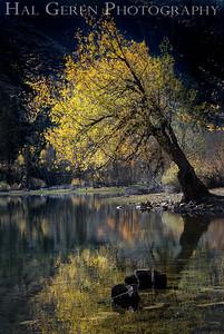 Lundy Lake Lee Vining, California 1710S2-LR5