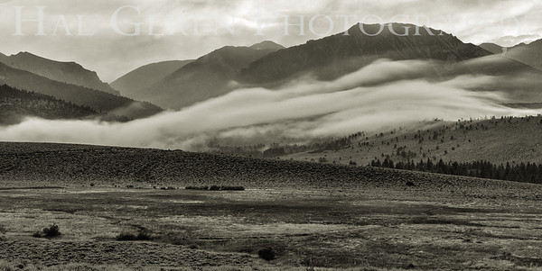 Mountain Mist Eastern Sierra, California 1807S-MM6BW1