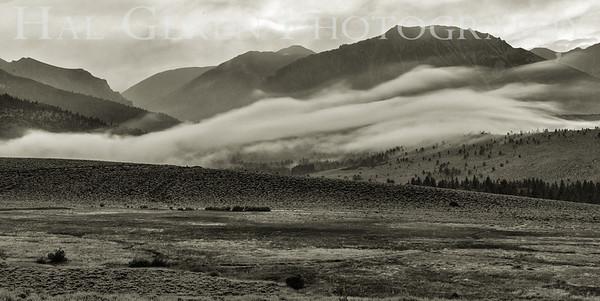 Mountain Mist Eastern Sierra, California 1807S-MM6BW1