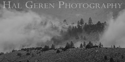 Mountain Mist Eastern Sierra, California 1807S-MM10BW1