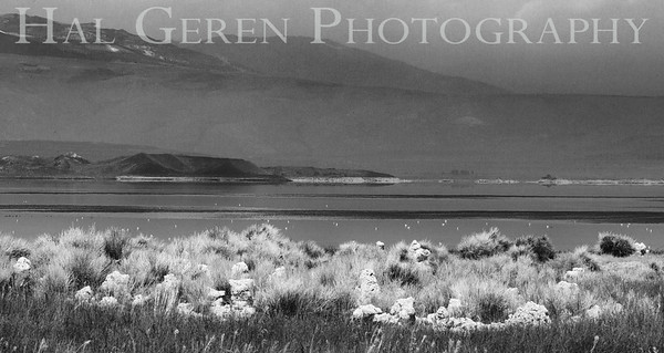 Storm coming in over Mono Lake Eastern Sierra, California 1807S-T7BW1