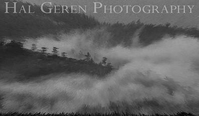 Mountain Mist Eastern Sierra, California 1807S-MM12BW1E1