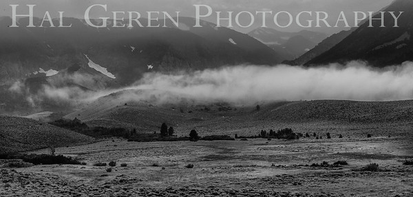 Mountain Mist Eastern Sierra, California 1807S-MM13BW1
