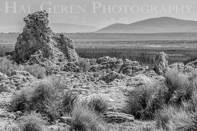 East Mono Lake Tufa Eastern Sierra, California 1807S-B1BW1