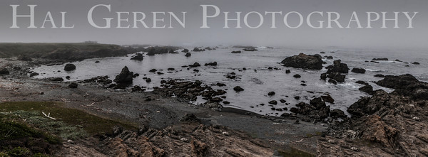 Mendocino Coast, California 1305M-BP2