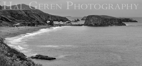 Goat Rock Bodega Bay, Ca 1906M-GR1BW1