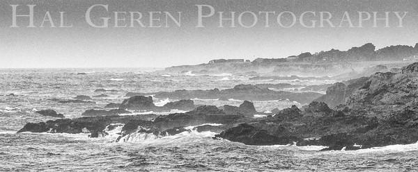 Mendocino Coast, California 1305M-V5E1BW1
