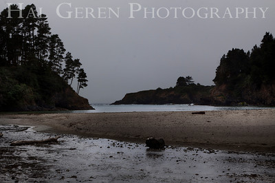 Mendocino Coast, California 1305M-BH1