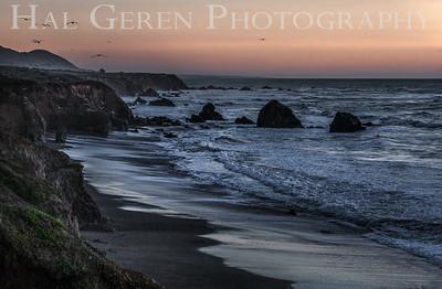 Mendocino Coast 1812M-S1