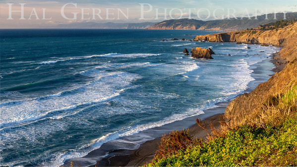 Mendocino Coast 1812M-CVS4