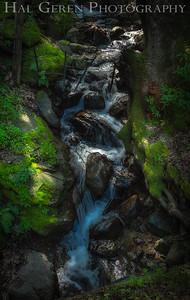 Stream on Mt Hamilton 1909H-S1