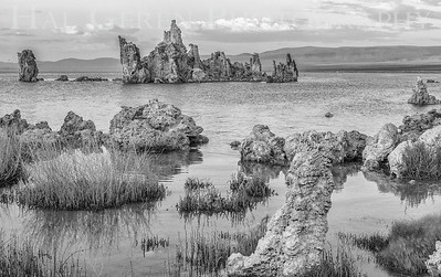 Tufa Formations Mono Lake, California 1707S-T1BW1