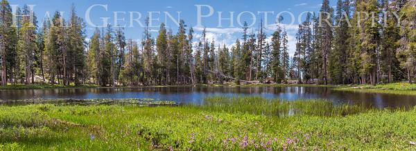 Yosemite, California 1707S-P1