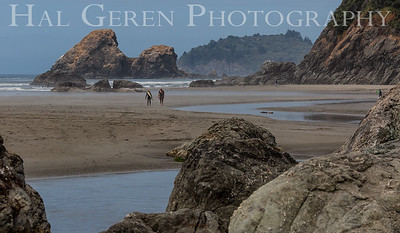 Moonstone Beach Trinidad, California 1808T-MB1