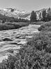 Saddle Bag Creek<br /> Yosemite, California<br /> 1607Y-SL7