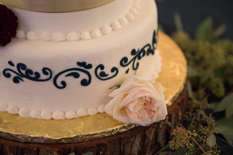 Fraizer Wedding the Reception (19 of 199)
